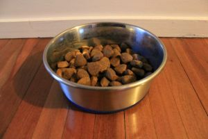 daisy hill vet pet food