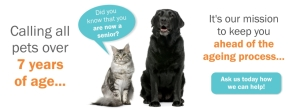 Senior Pet Web Banner
