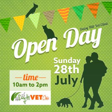 Daisy Hill Open Day